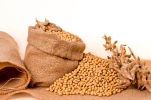 soybeans-2039639_960_720